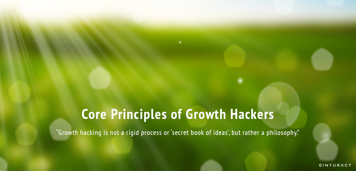 Core Principles of Growth Hackers