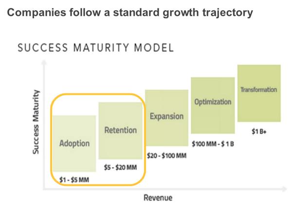 success-maturity-model