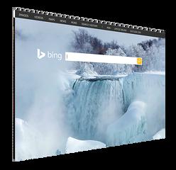 bing_inturact